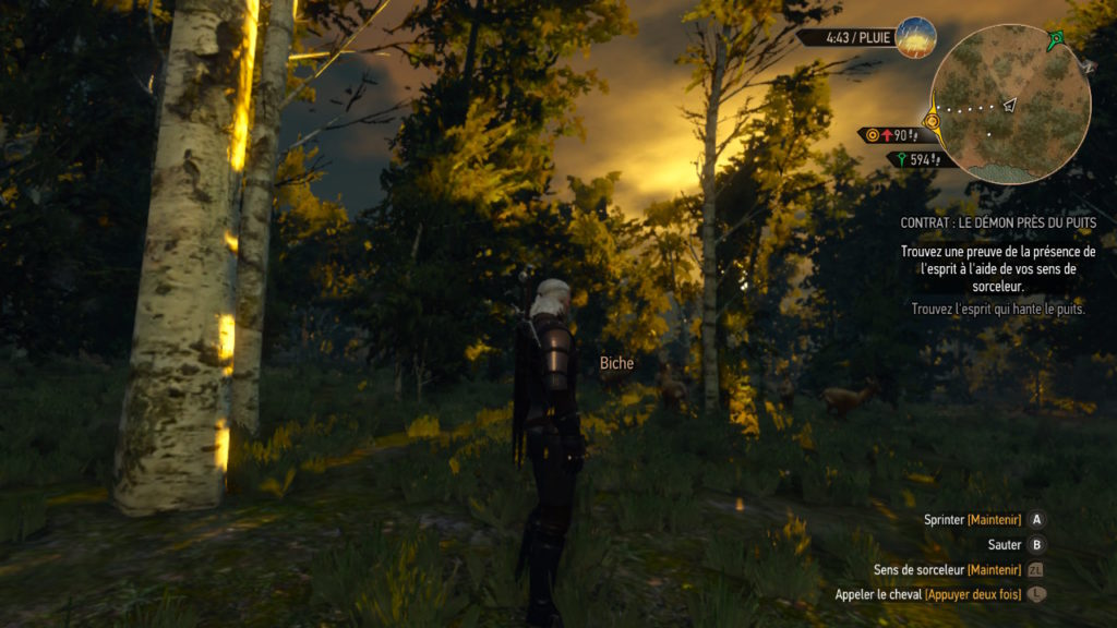 the witcher 3 wil hunt