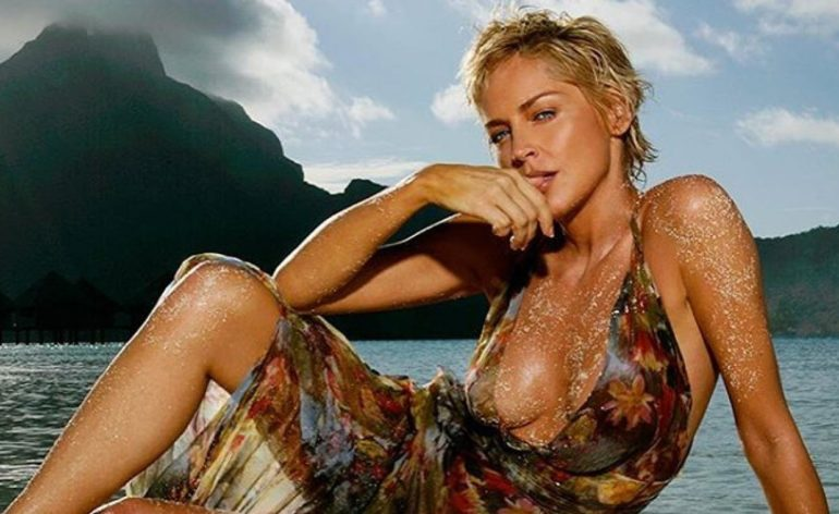 sharon stone bumble