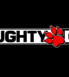 Naughty Dog sur un nouveau projet ?